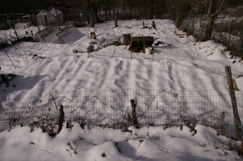 雪と鶏とカルボナーラ_f0106597_23332962.jpg