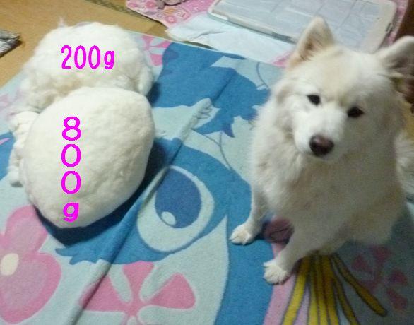 e0018604_20114038.jpg