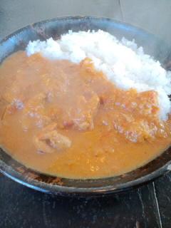 インド料理をめぐる冒険 を届ける冒険_c0033210_1411817.jpg