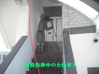 f0031037_2033272.jpg