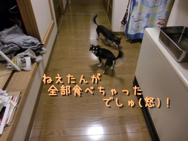 b0122046_1948530.jpg