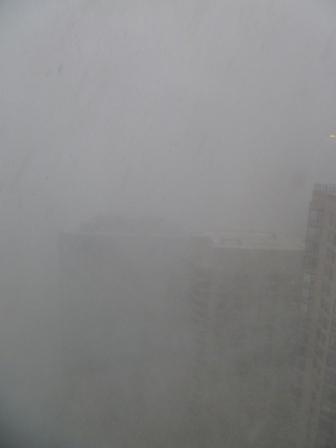 本日のシカゴ_a0087957_052764.jpg