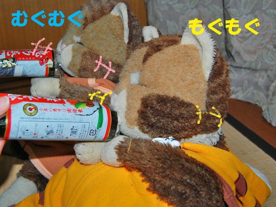 b0059978_21512947.jpg