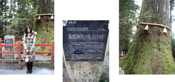 神さまめぐりの旅 箱根・九頭龍神社篇 その1_d0174704_22311492.jpg