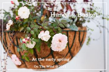 春はそこまで♪_d0154507_87423.jpg