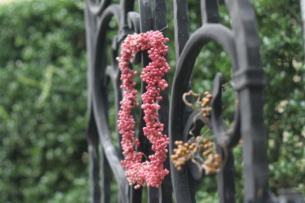 実もののリースフレーム ドア飾り 山手西洋館の結婚式_a0042928_21333237.jpg