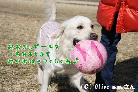 c0214455_15424089.jpg