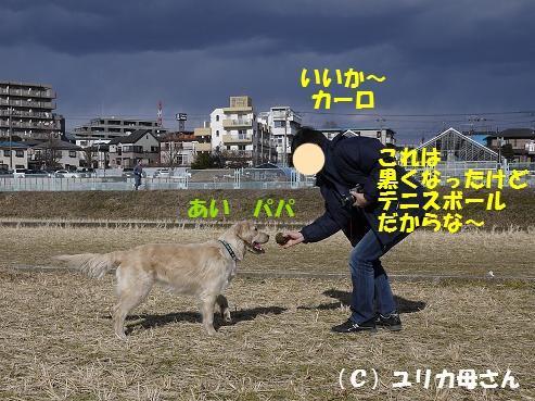 c0214455_16125825.jpg