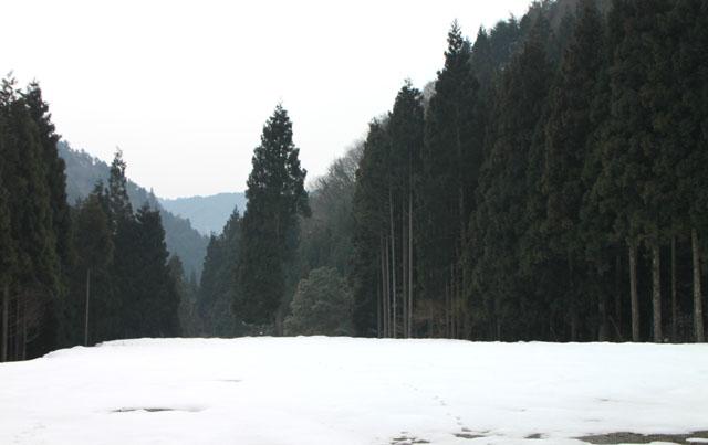 北山雲が畑フォトツアー_e0048413_17543787.jpg