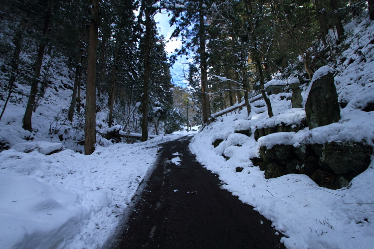 雪の志明院_e0051888_18274398.jpg