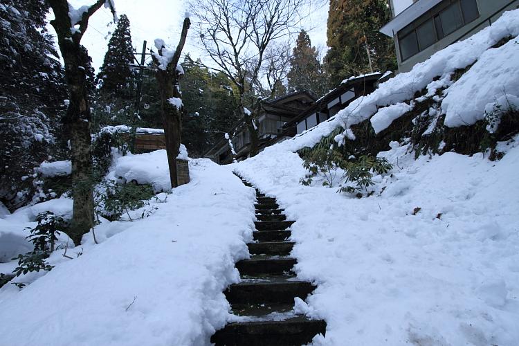 雪の志明院_e0051888_18292745.jpg