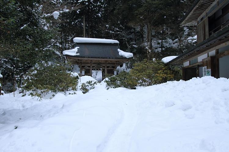 雪の志明院_e0051888_18301369.jpg
