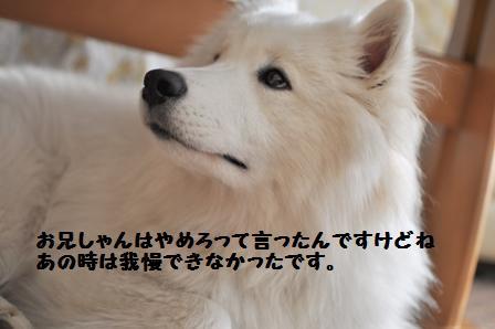 f0212597_14354480.jpg