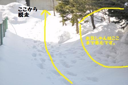 f0212597_14361048.jpg