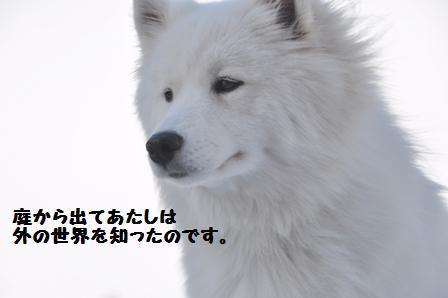 f0212597_14365052.jpg
