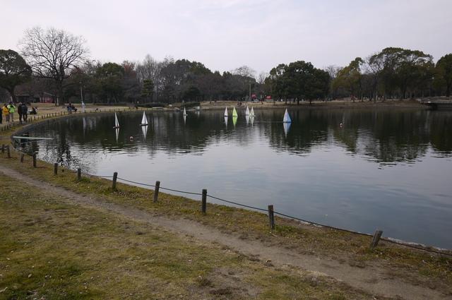堺 ポタリング_e0214805_17245893.jpg