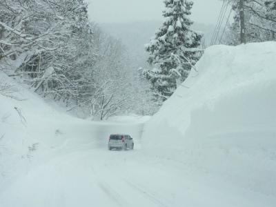 雪と私達_b0084826_8314355.jpg