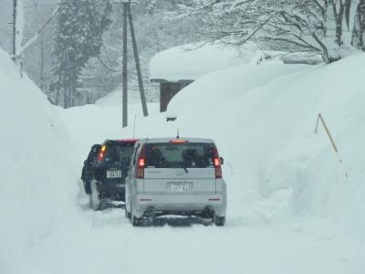 雪と私達_b0084826_8315942.jpg