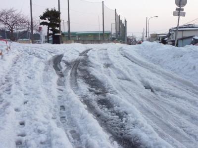 雪と私達_b0084826_839797.jpg