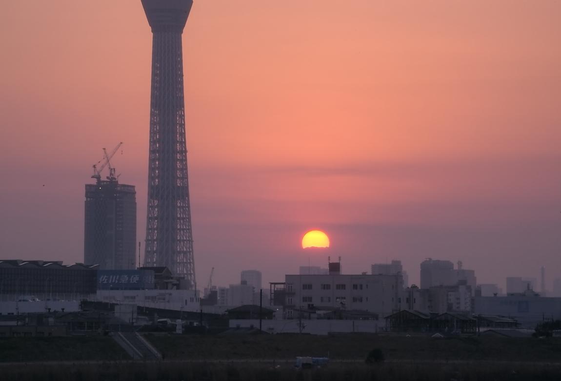 ダイヤモンド富士・葛飾区荒川堤防上_a0150260_23353685.jpg
