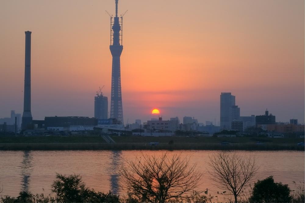ダイヤモンド富士・葛飾区荒川堤防上_a0150260_23391939.jpg