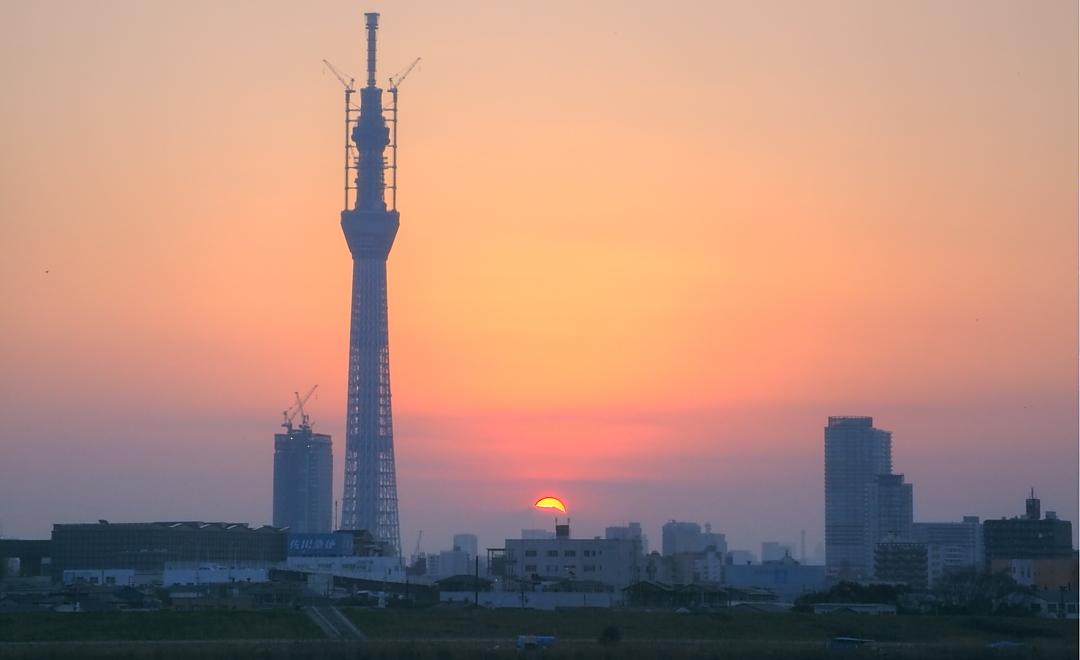 ダイヤモンド富士・葛飾区荒川堤防上_a0150260_23423975.jpg