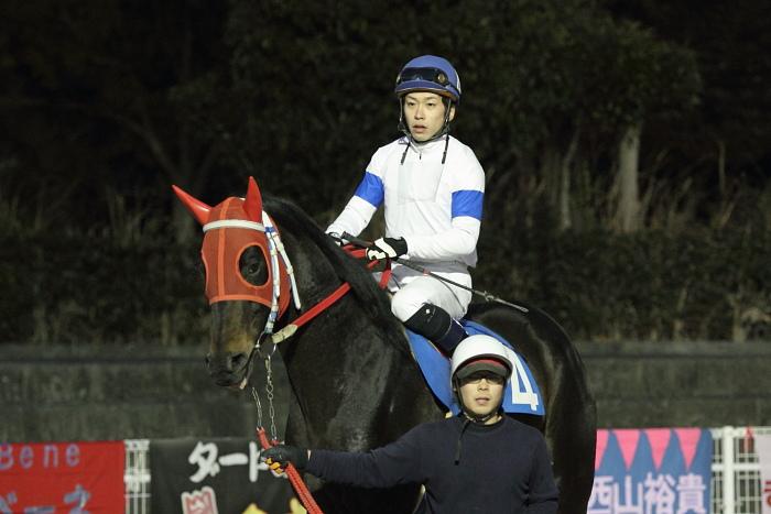 2011年2月4日(金) 高知競馬 6R C3-7 選抜馬_a0077663_18181154.jpg