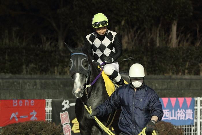 2011年2月4日(金) 高知競馬 6R C3-7 選抜馬_a0077663_18182042.jpg