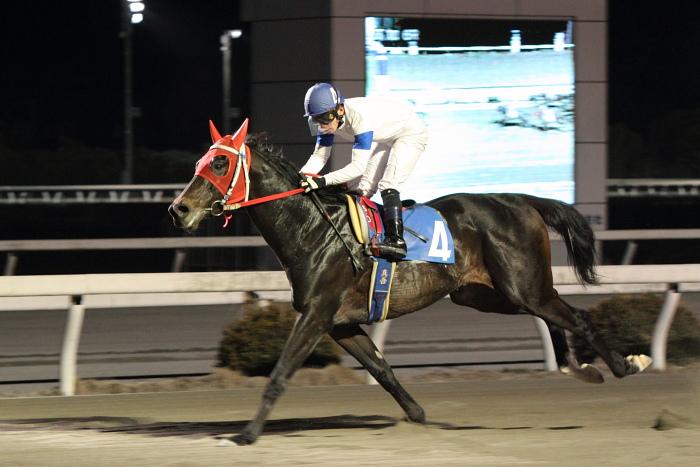 2011年2月4日(金) 高知競馬 6R C3-7 選抜馬_a0077663_1818595.jpg