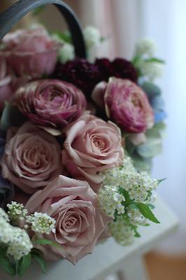 """Rose \""""Morning Dew\""""_f0057564_19563942.jpg"""