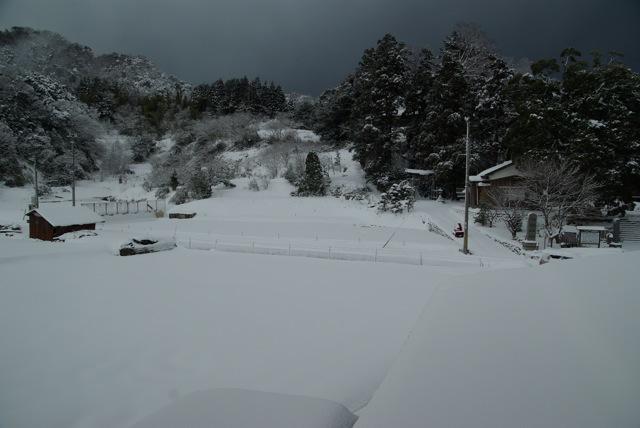 大雪の山陰_e0139376_1173542.jpg