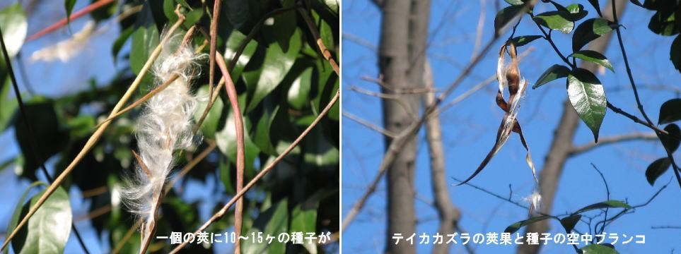 f0137096_14203274.jpg