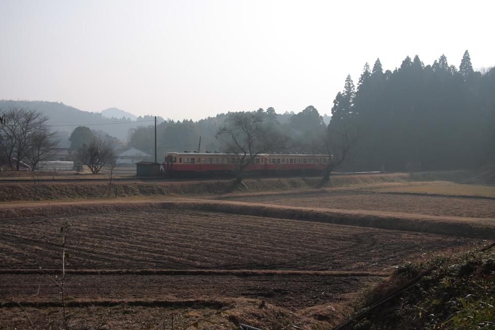 朝靄 - 2011年冬・小湊鉄道 -_b0190710_2136360.jpg