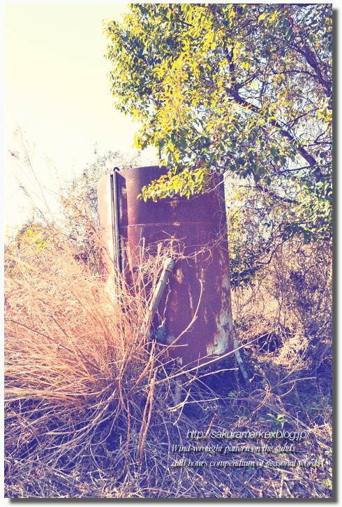 2011 冬の記憶 №09 ~廃タンクのある廃屋へ・・・~_f0235723_161465.jpg