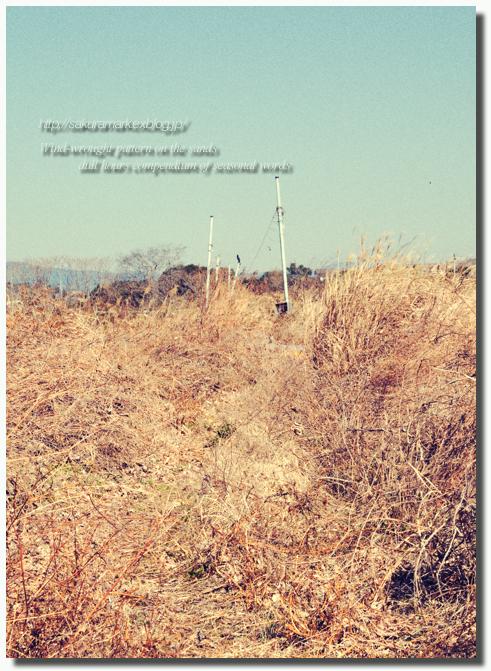 2011 冬の記憶 №09 ~廃タンクのある廃屋へ・・・~_f0235723_1616828.jpg