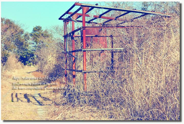 2011 冬の記憶 №09 ~廃タンクのある廃屋へ・・・~_f0235723_1685978.jpg
