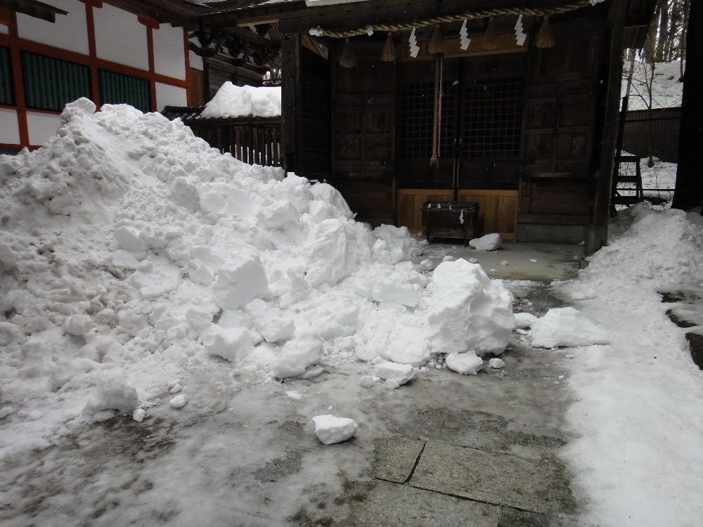 落雪_c0111229_1754864.jpg