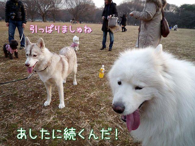 土曜だよ!おっきな公園♪_c0062832_225257.jpg