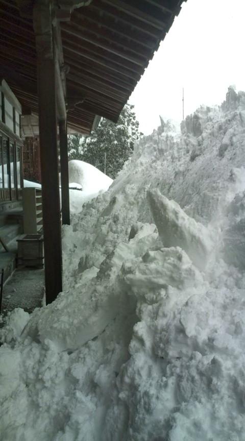 雪国便り_c0100949_0145852.jpg