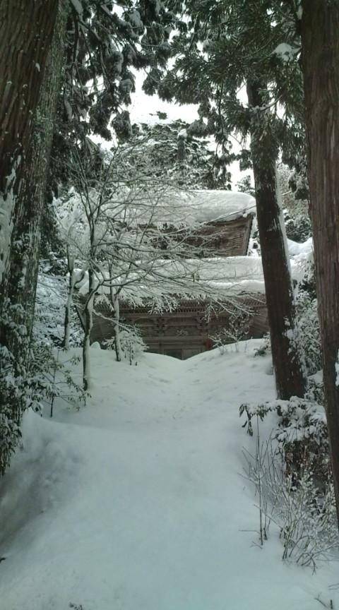 雪国便り_c0100949_0145878.jpg