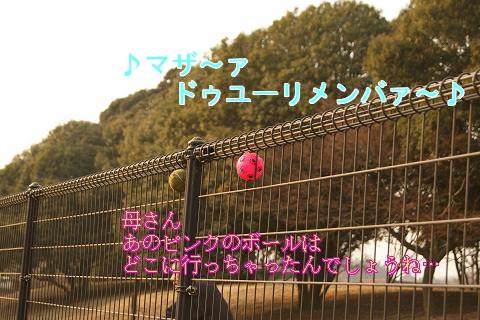 c0214455_17536.jpg