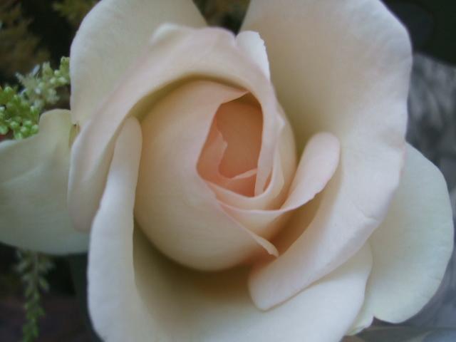 オークリーフ(淡色トーンの花束)_f0049672_1773185.jpg
