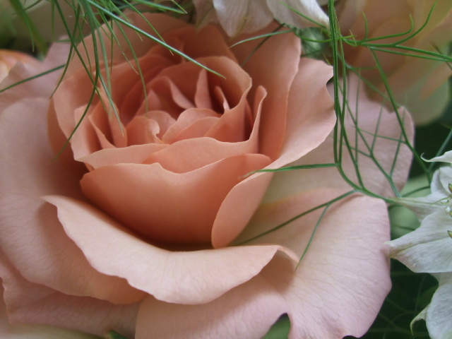 オークリーフ(淡色トーンの花束)_f0049672_1775886.jpg