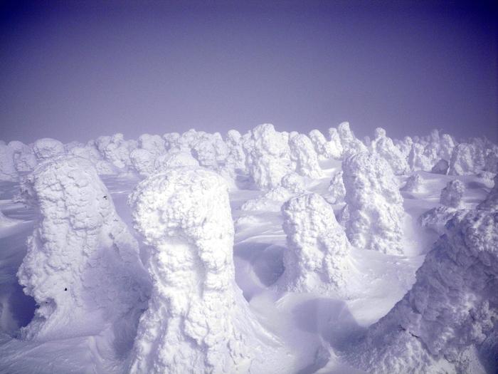 西吾妻山・二十日平 ~ 2011年2月4日_f0170180_221548.jpg