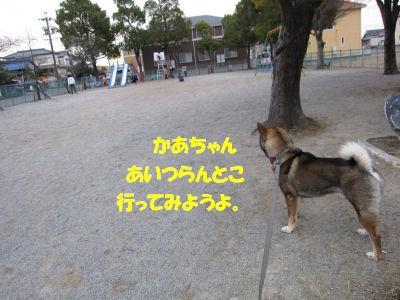f0143123_1959266.jpg