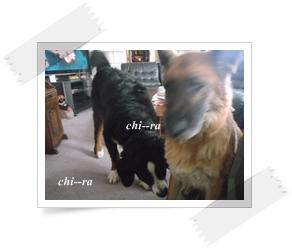 b0198925_22172151.jpg