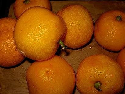 台所の日-柚子ジャムの仕込み_c0133854_2235241.jpg