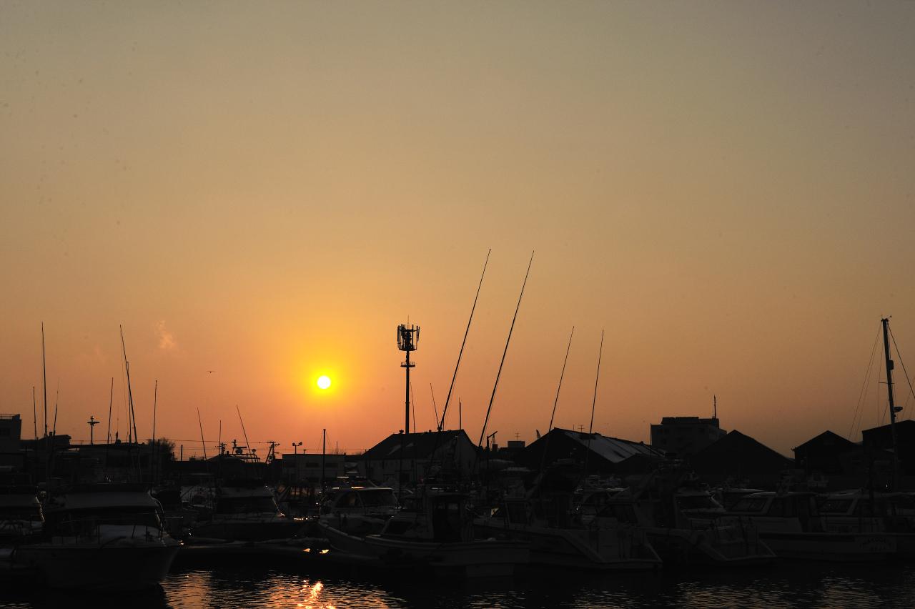 太陽がいっぱい_e0171886_1940437.jpg