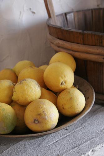 有機レモンとアントネッロ_f0106597_1543359.jpg