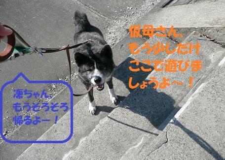 f0121712_0301559.jpg